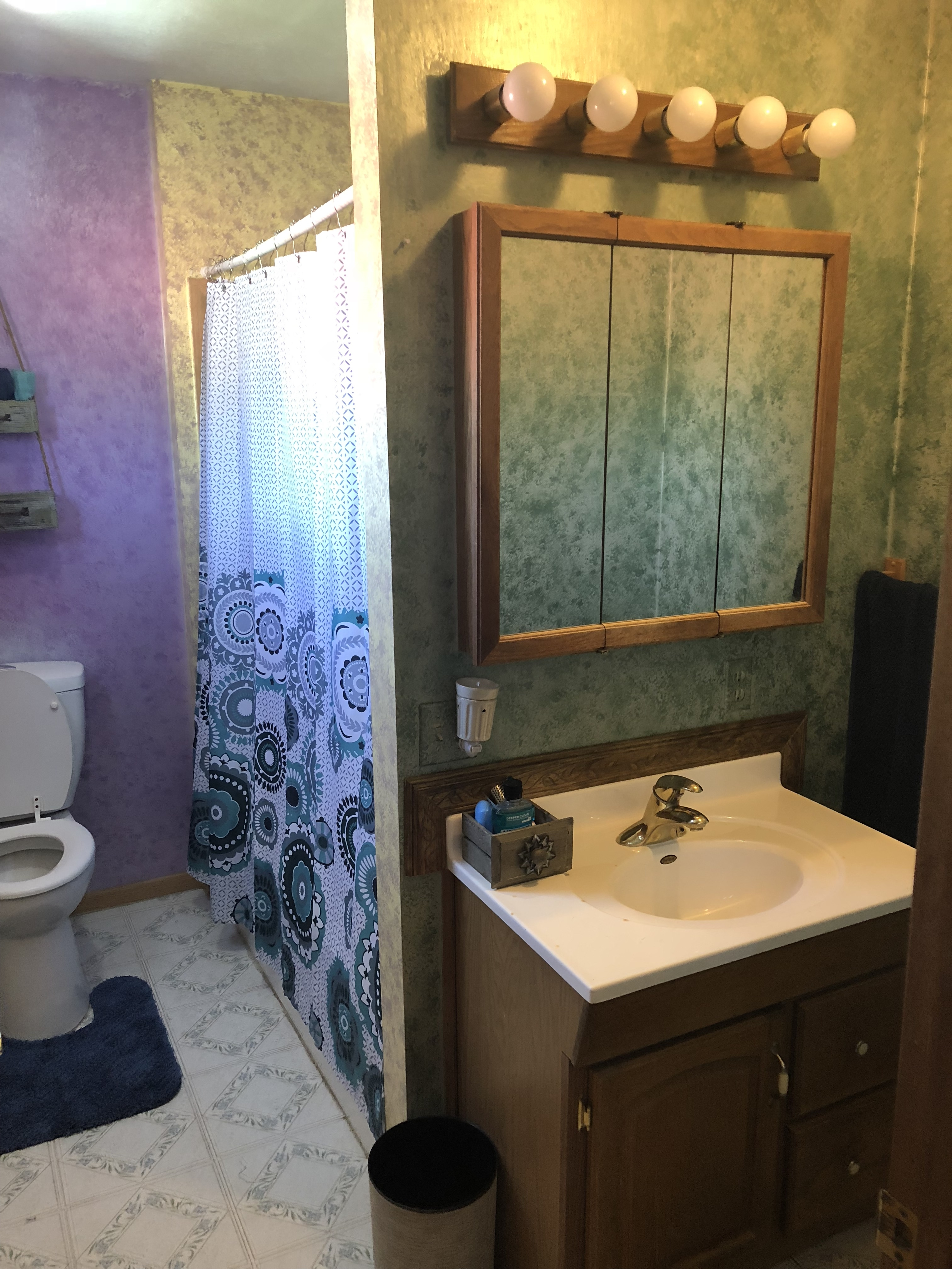 A picture of the bathroom with toilet and shower stall to the left, and the sink, light, and waste bin in front of the shower stall and to the right.